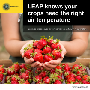 Improving Agriculture: LEAP knows your crops need the right air temperature