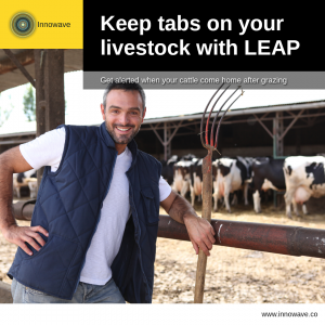 Improving Farming: Keep tabs on your livestock with LEAP