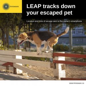 Pet Care: LEAP tracks down your escaped pet